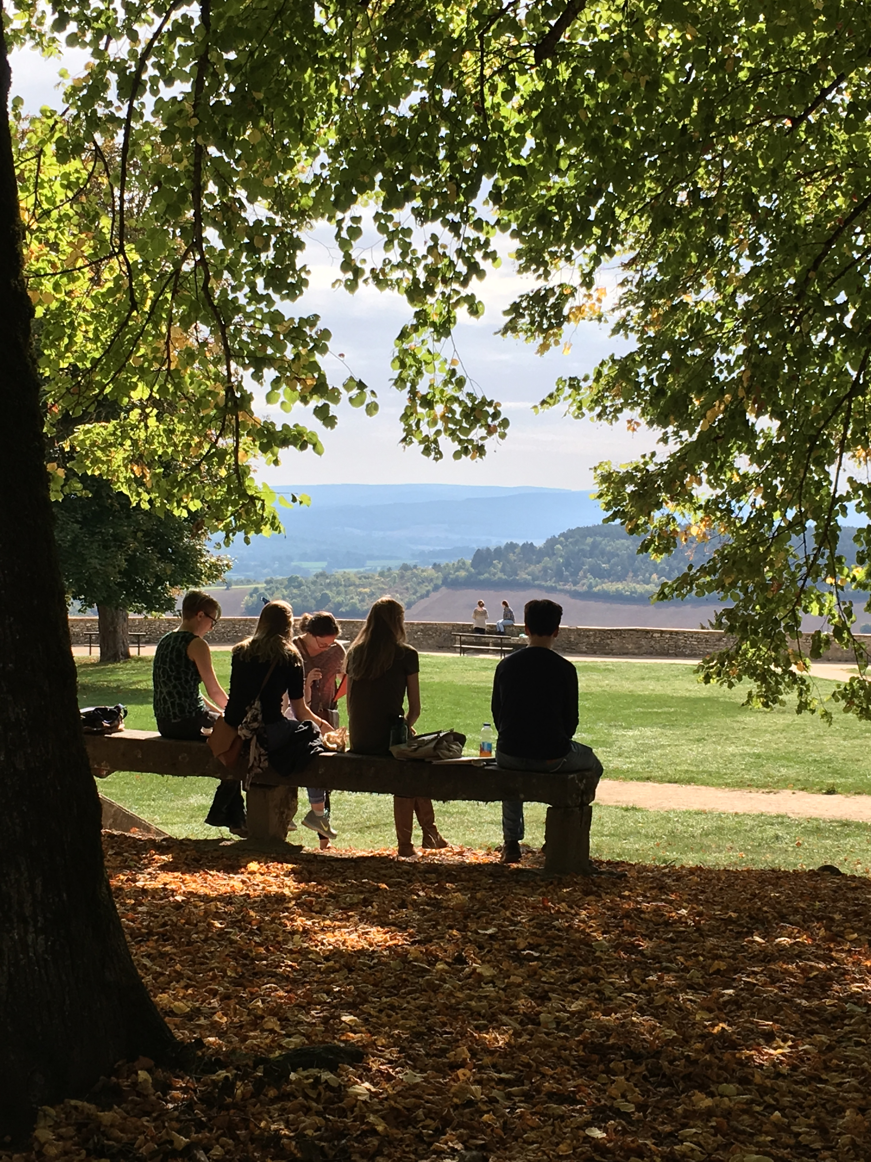 Students sit on a fence under a tree overlooking a scenic landscape in Vezelay, France