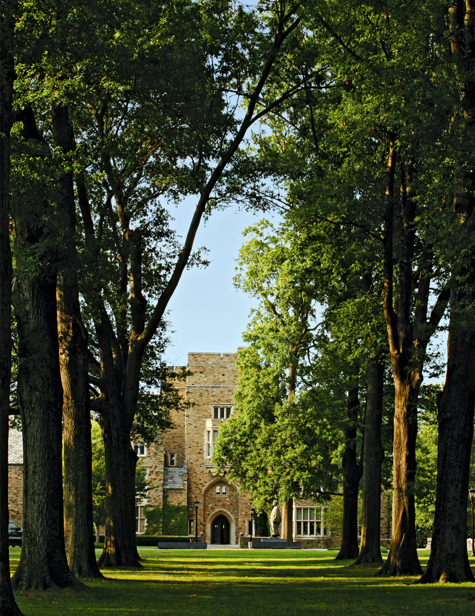 Oak Alley with a view of Southwestern Hall