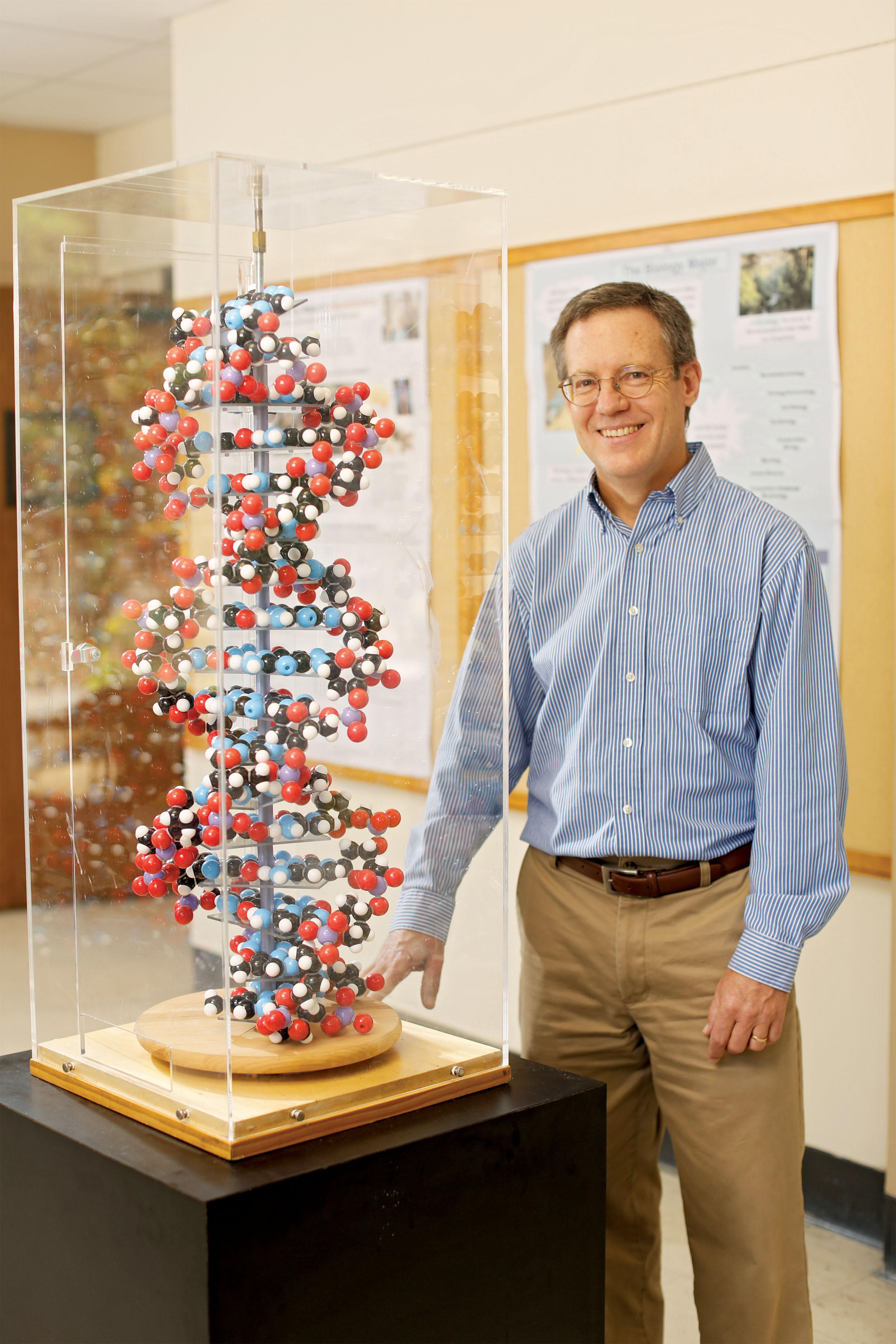 A man in a blue shirt stands next to a model of DNA.