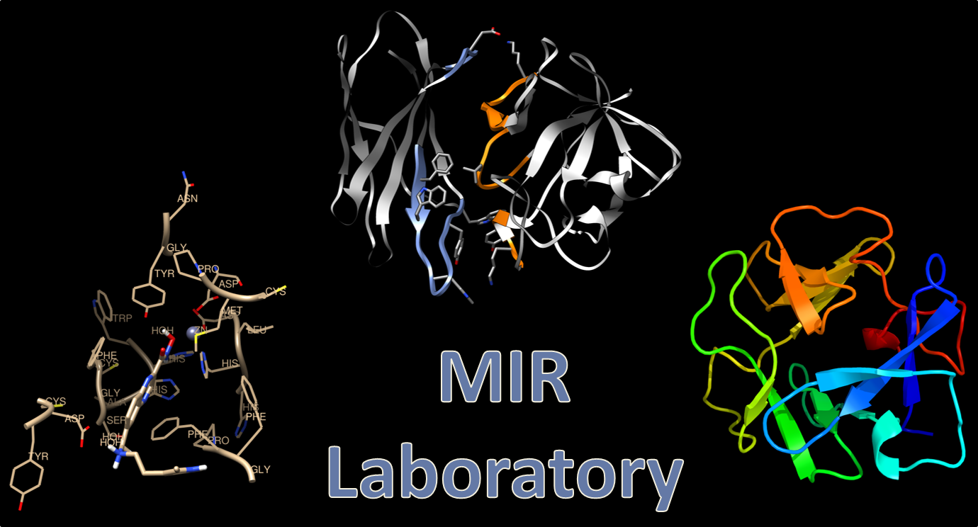 an image with the words MIR Laboratory