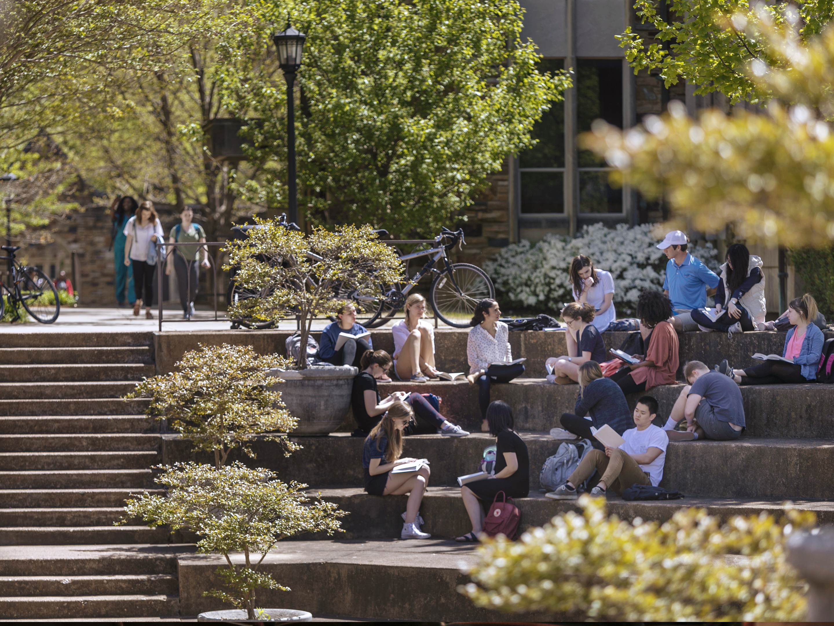 Students seated in an amphitheater on rhodes campus