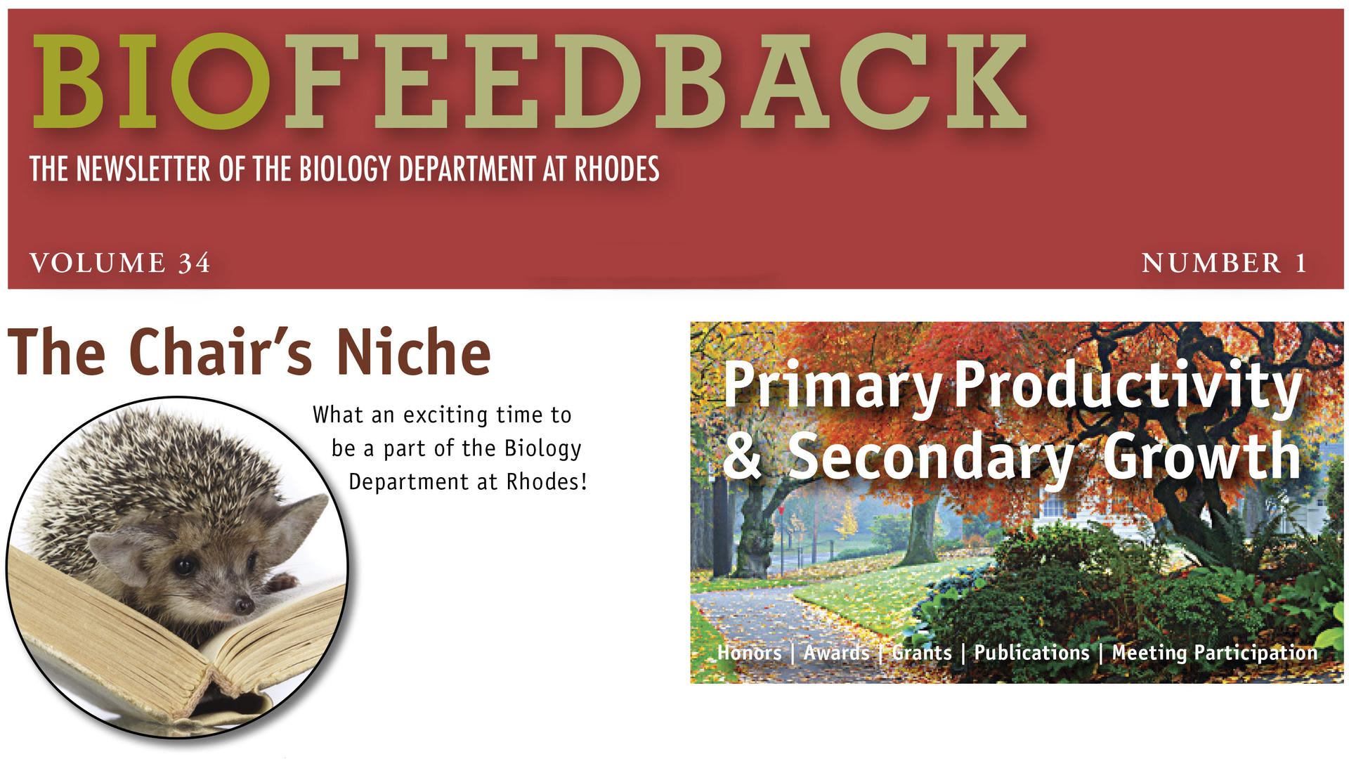 Biofeedback newsletter header