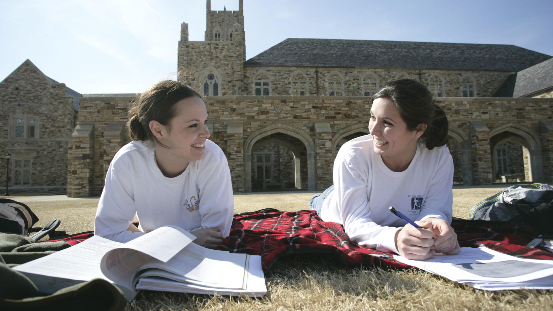 Students studying on the lawn