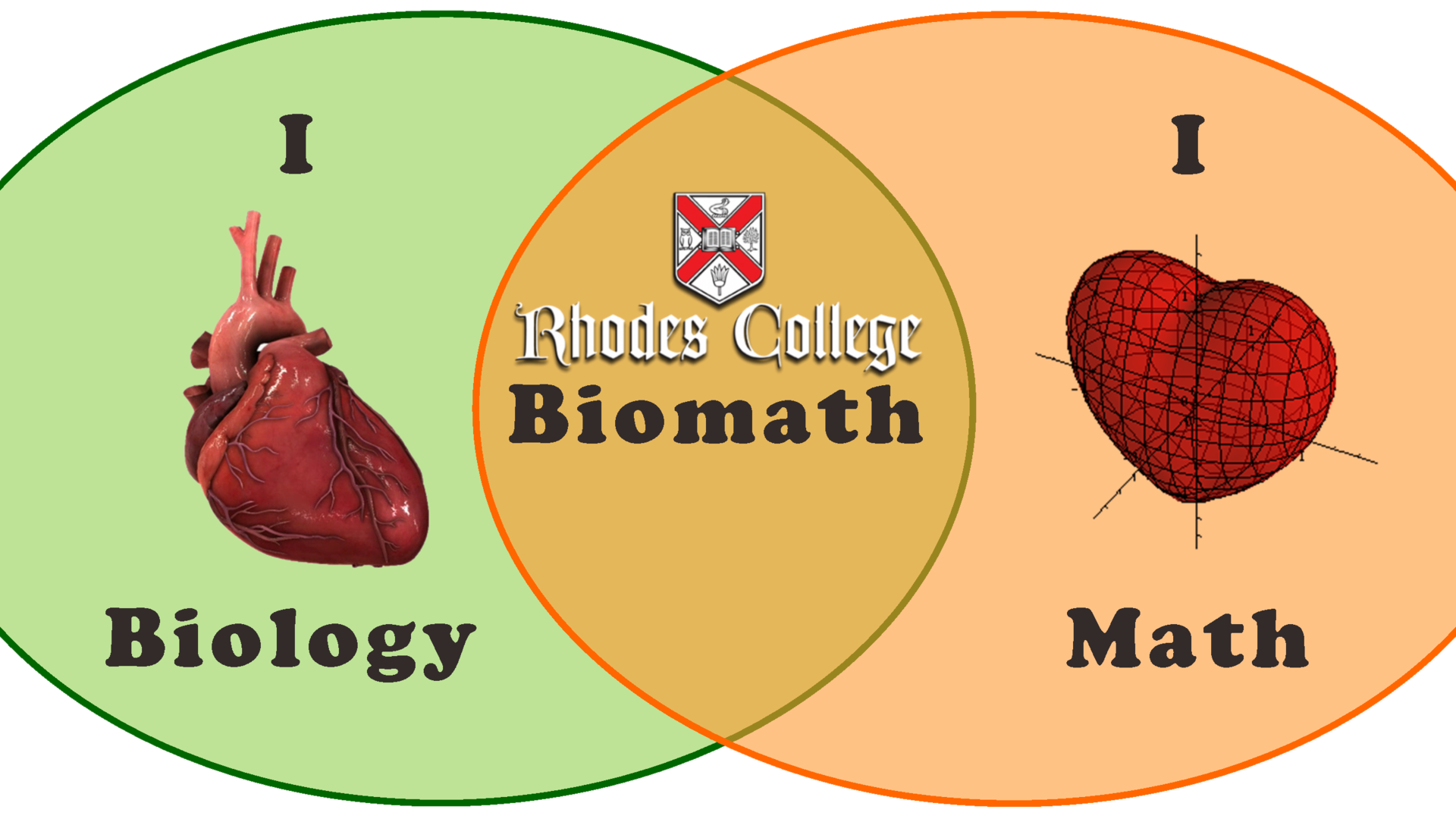illustration of math and biology overlap