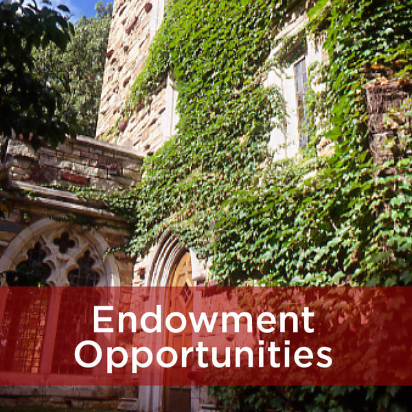 Endowment Opportunities at Rhodes College