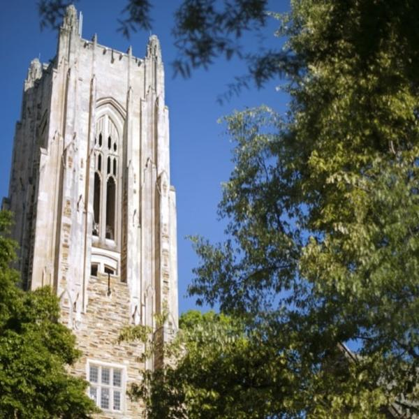 A huge collegiate gothic tower extends upward through a canopy of oak trees.