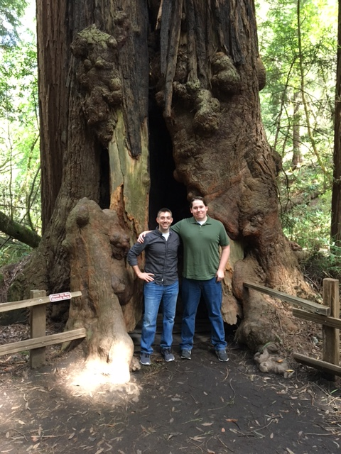 a professor and a student in front of a large tree